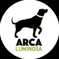nuevo logo arca copia